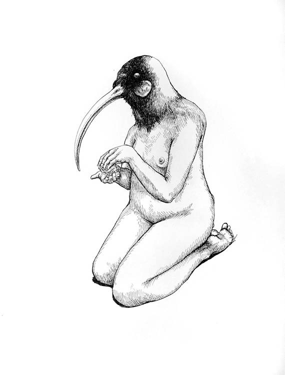 Nude Ibis, 2008
